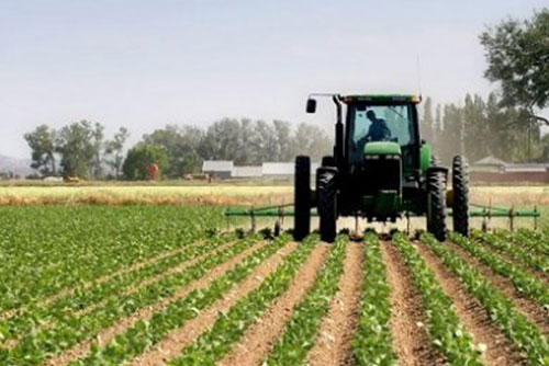 Asociaciones agrícolas y ganaderas